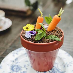 Carrot Cake Planter